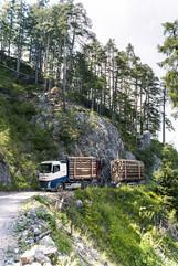Rundholz LKW - Georg Stocker-03337.jpg
