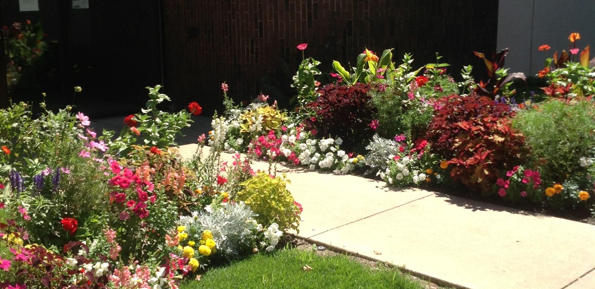 Entrance Floral Landscape_Grand Haven Ga