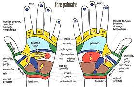 Réflexologie palmaire et massage des mains à Paris