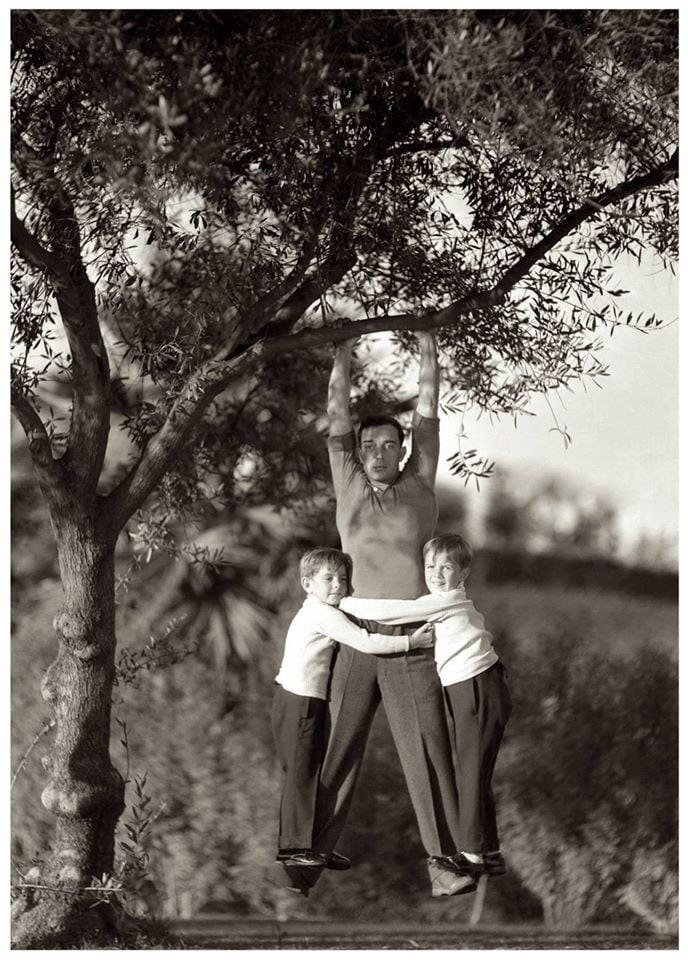 Buster Keaton suspendu à une branche d'arbre avec ses deux fils, Joseph et robert Talmadge, vers 1931. Photo Hulton Archive / Getty Images.