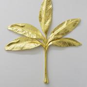 Fruta de Oro
