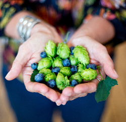 New Day Craft Co-Founder Tia Agnew with Hops and Blueberries_Haley Neale Little Robot Photography_ed