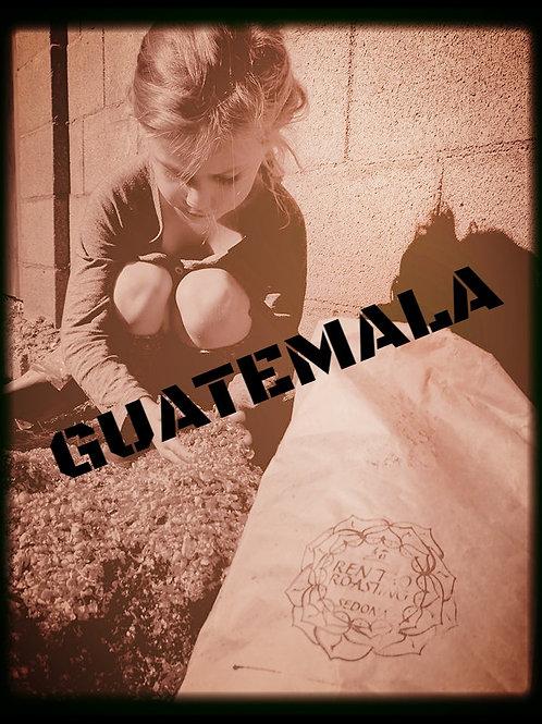 GUATEMALA FTO