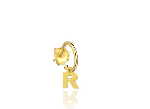 Mini R