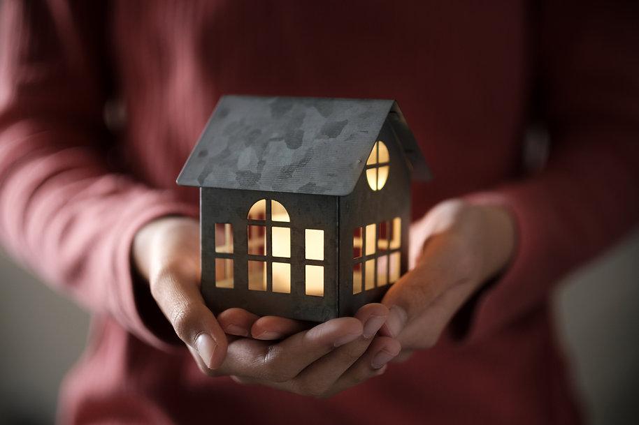 model-house-in-the-palm-MDVCAH5.jpg