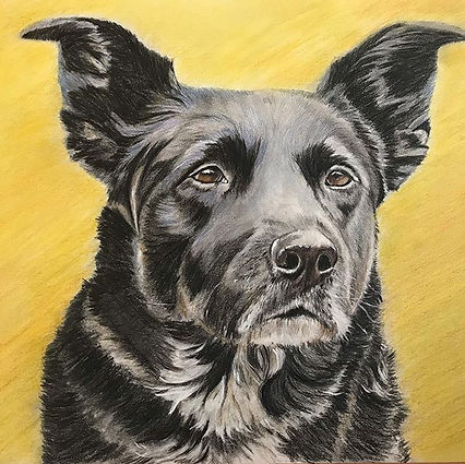"""In Memory of Betty, 15""""x15"""" colored penc"""