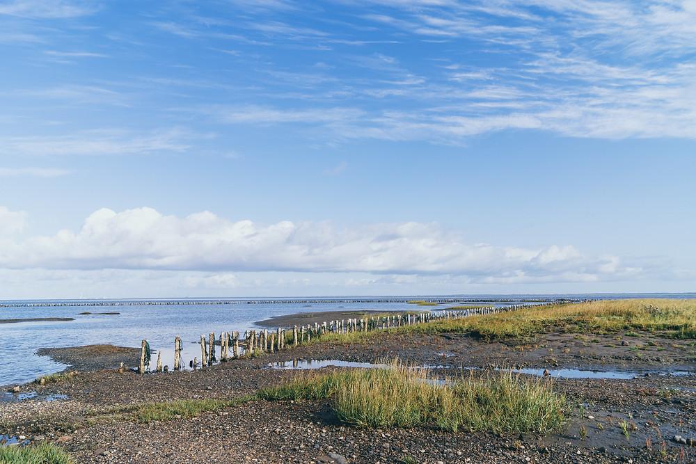 nationalpark, unesco kulturerbe, wattenmeer, dänemark