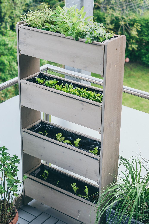 Vertikalbeet, tchibo, Pflanzen