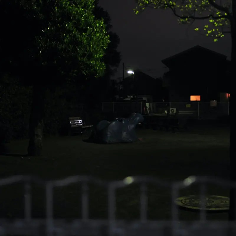 dawn at midnight