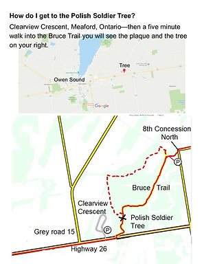 Map to the Tree.jpg