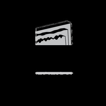 NSI - blk web.png