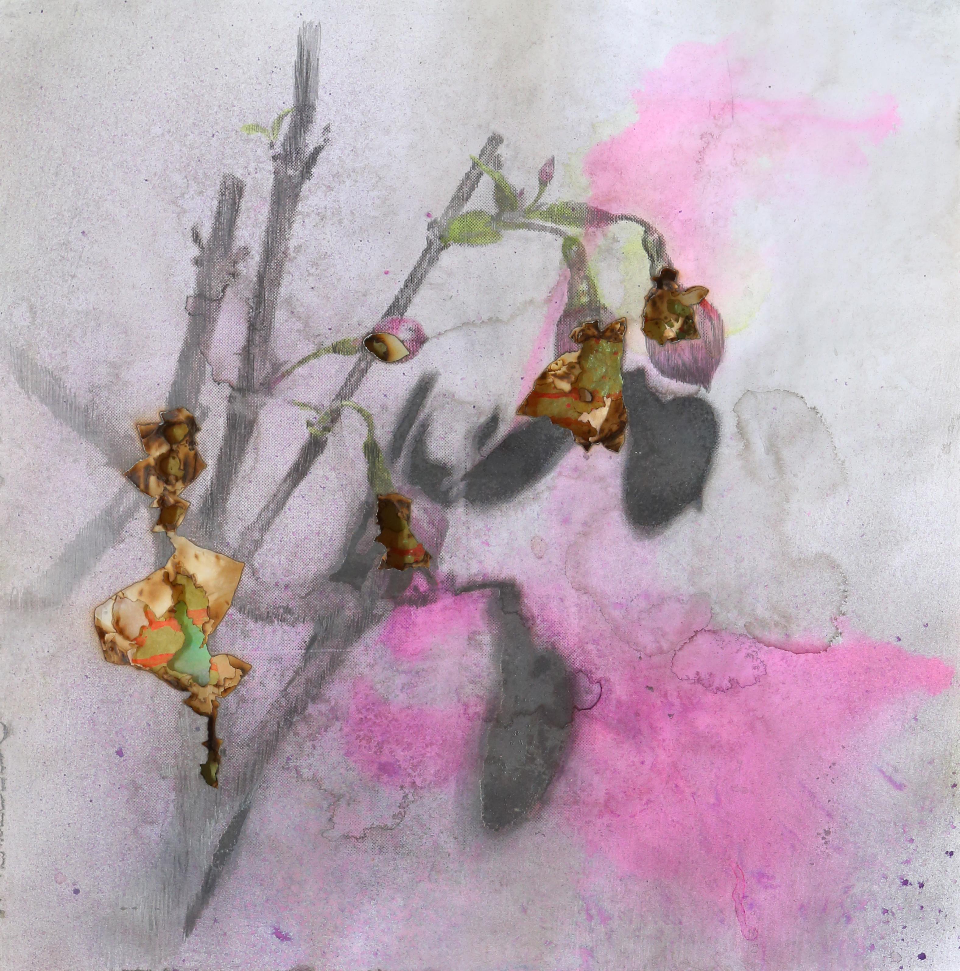 Le portrait des plantes, Fuchsia 3