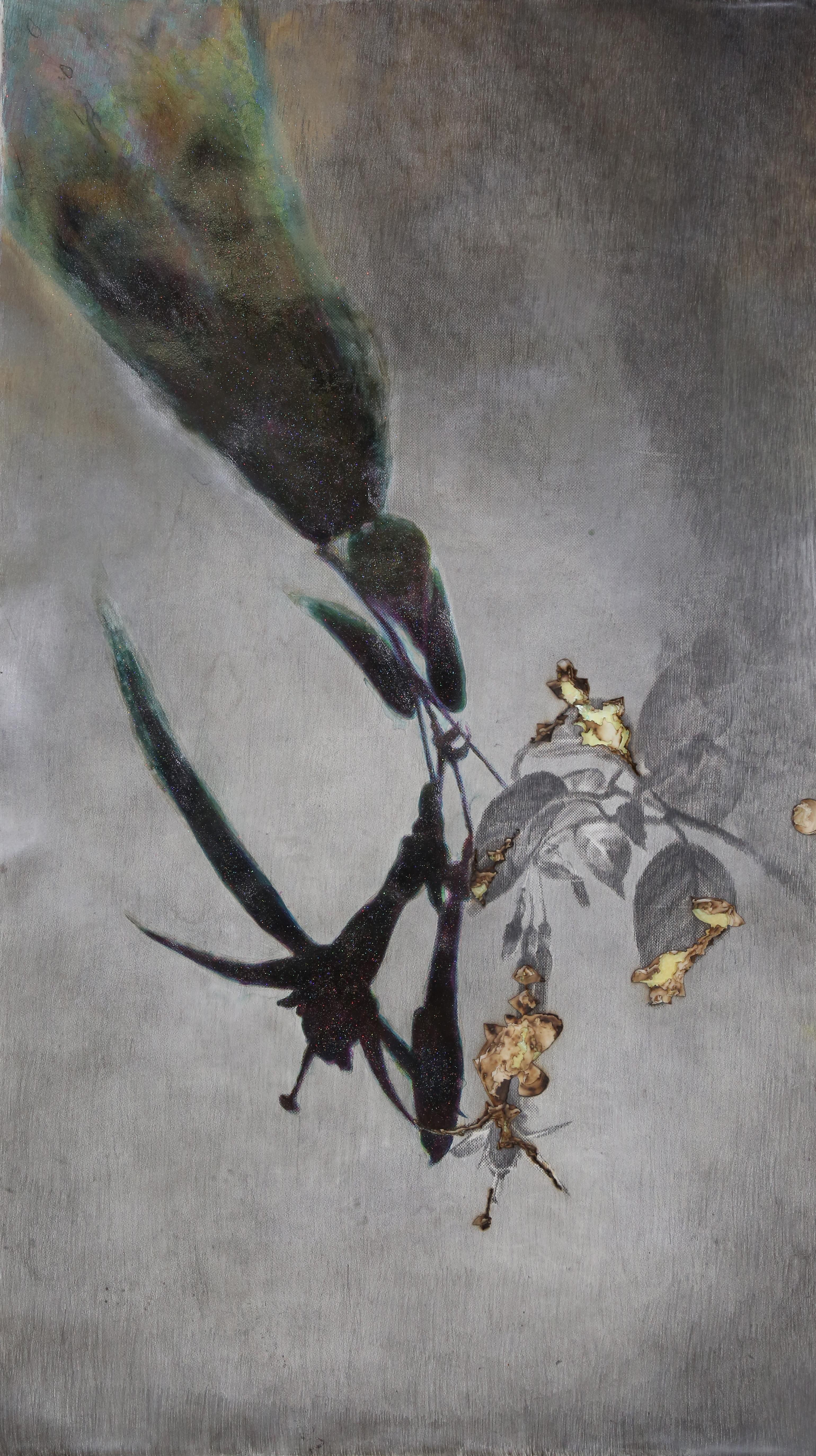 Le portrait des plantes, Bruyères