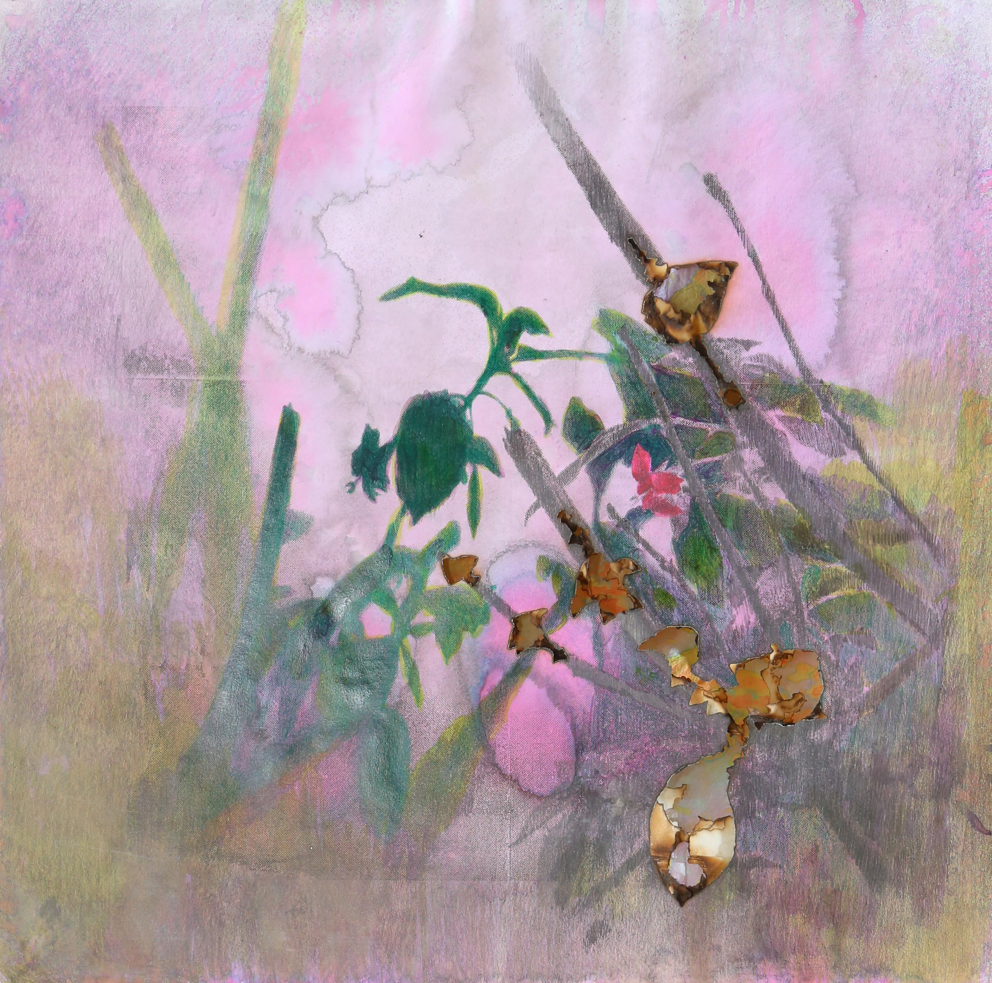 Le portrait des plante, Fuchsia 4