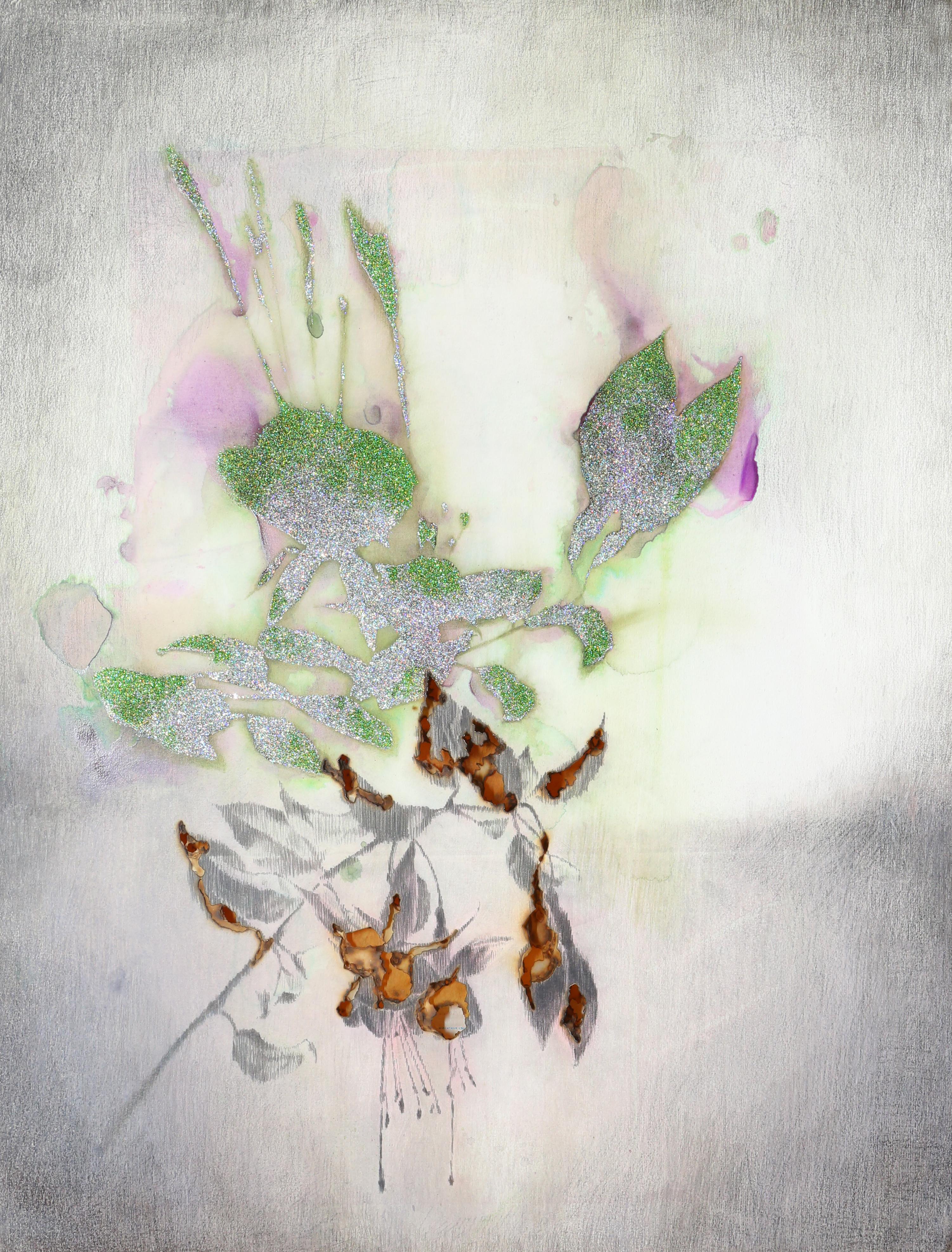 Le portrait des plante,Fuchsia