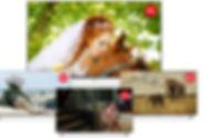 fvp-4000t_features_3digitaltuner.jpg