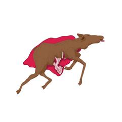 dead-moose-color.png