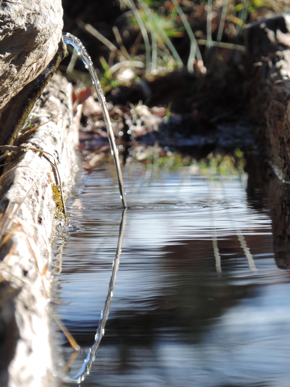 Ruisseau | Vincent Fontan
