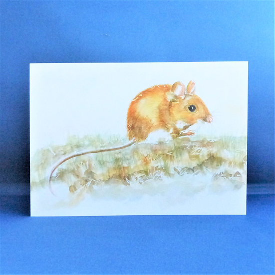 Mr Nibbles - A5  Wood Mouse Greetings Card