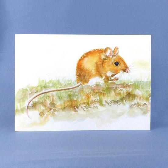 Mr Nibbles - Original Art Wood Mouse Greetings Card