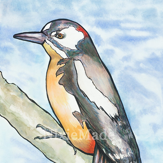 Great Spotted Woodpecker - Original Art Giclée Print