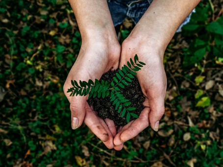 Earth Day 2021: Our commitments to lead more eco-friendly lives