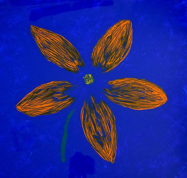 Flying Flowers (1).jpg