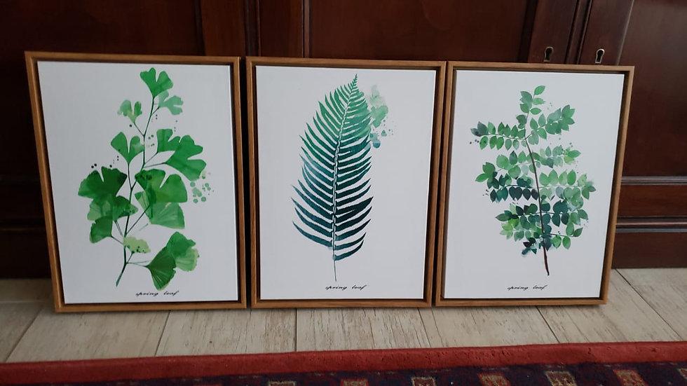 Set Cuadros hojas Canva