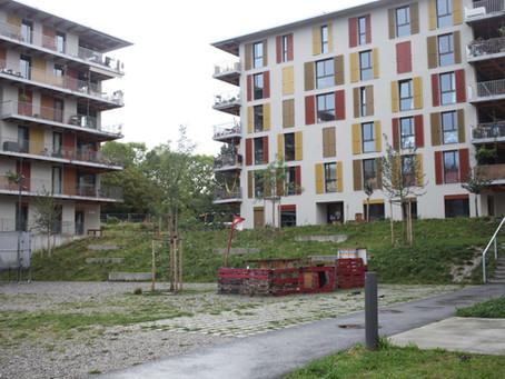 Rencontre avec les habitants pour comprendre les choix relatifs à l'entretien des espaces extérieurs