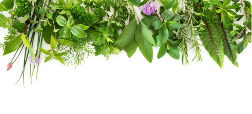 Loose Herbs.jpg
