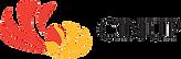 cinup_logo_160.png