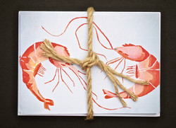 Catch of the Day | Shrimp Notecards