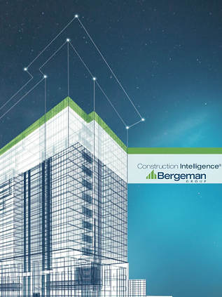 BERGEMAN GROUP