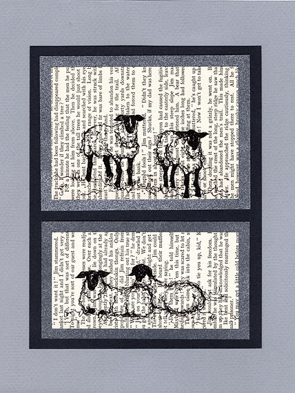 original sketches illustrations sheep