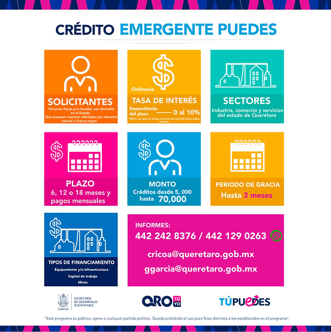 5. EMERGENTE PUEDES LOGOS whats 2.jpg