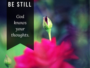 Be Still, God Knows Your Needs