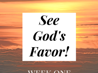Your Shield of Divine Favor