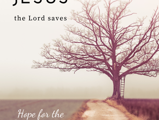 Jesus, the Lord saves