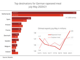 German rapeseed meal exports reach record level