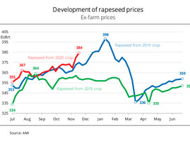 Scarcity of supply drives rapeseed price rally in Germany
