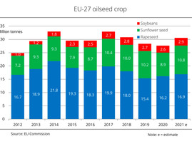 Record harvest forecasts for EU soybeans, sunflower seeds