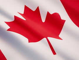 Canadian biofuel groups testify at committee meeting on low-carbon, renewable fuels