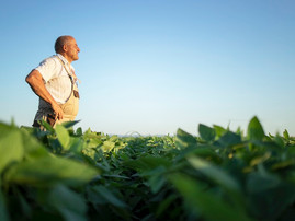 Biodiesel remains a priority for Illinois Soybean Assn.'s checkoff-funded projects in 2022