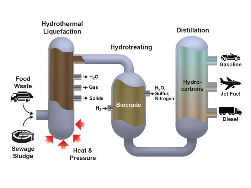 biocrude, renewable diesel, biobased diesel, biodiesel