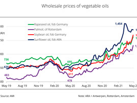 Vegetable oil prices continue to rise
