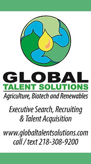 Global Talent Solutions