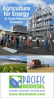 Agriculture for Energy to Grow Hawaii's Economy