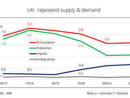 UK to require extensive rapeseed imports due to another small harvest
