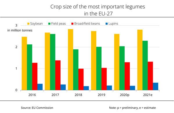EU legume production continues to increase
