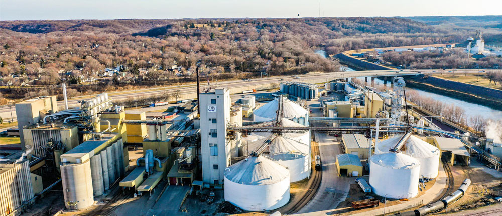 soybean processing